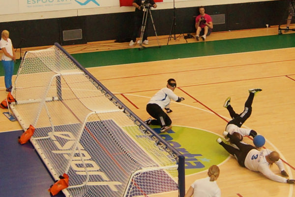 goalfix international goalball goal